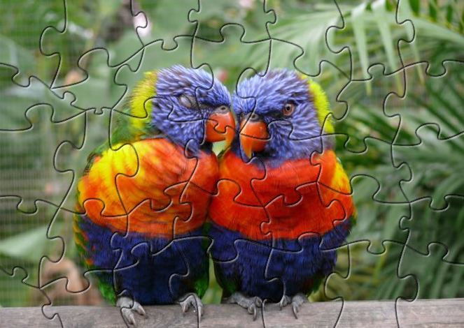 Click to view LSSP Love Bird Puzzle 1.0 screenshot